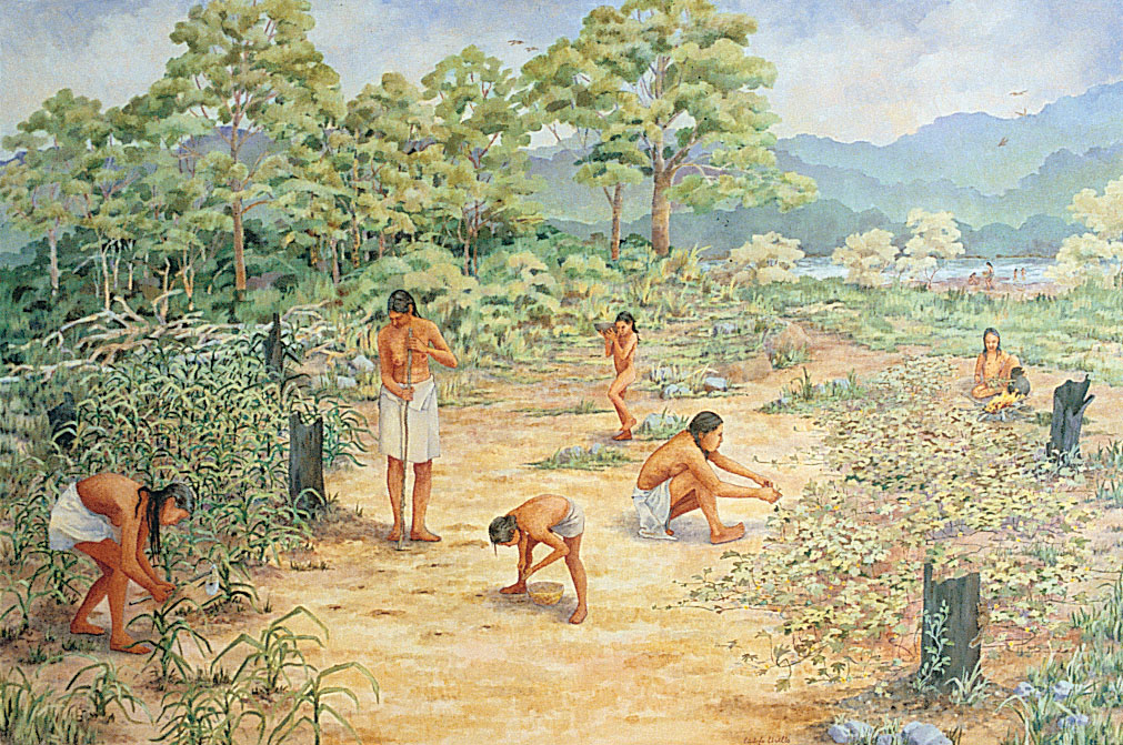 Woodland Indians first developed farming in Tennessee.