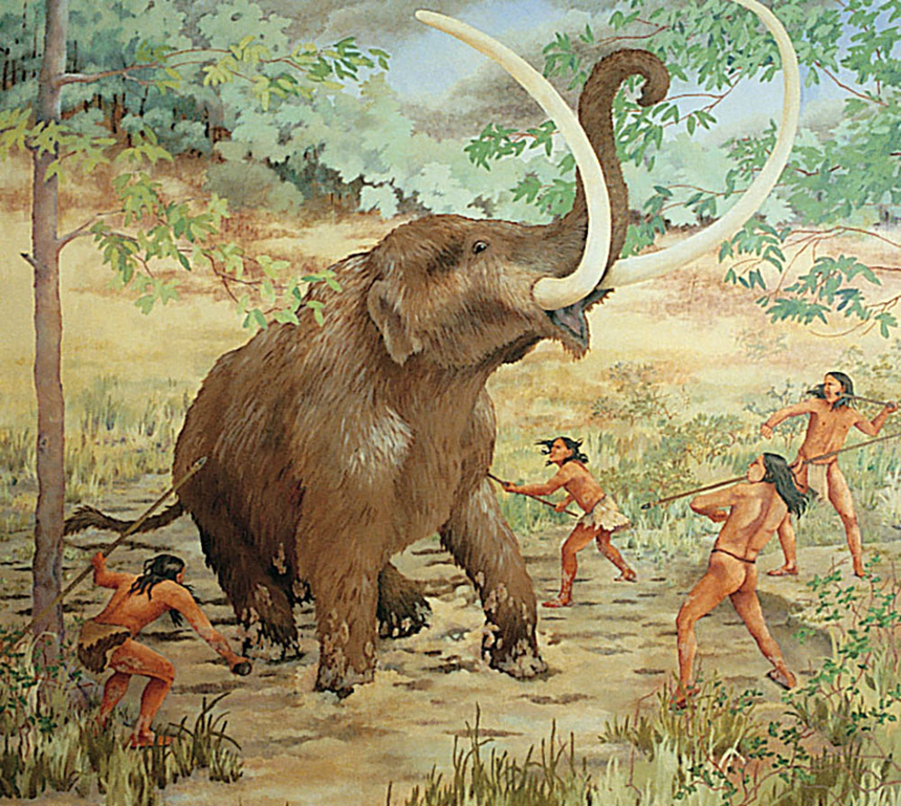 Early man hunted mastodon that roamed during the last Ice Age.